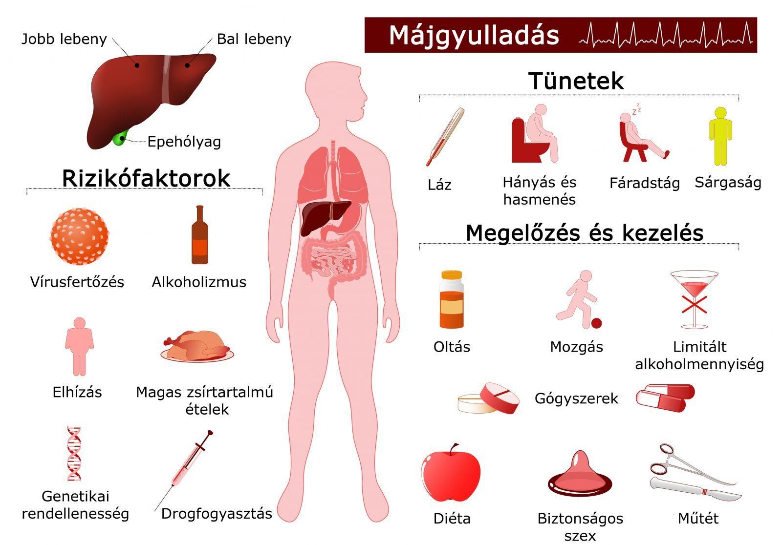 májbetegség ízületi tünetek