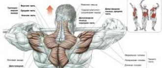 csípőízületek coxarthrosis kórtörténetét