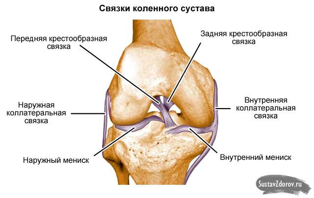 térdfájdalmi sebész milyen gyógyszerek a térdízület fájdalmához