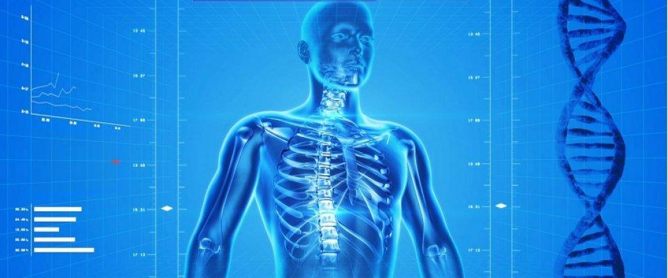 a medence csontok és ízületek betegségei ízületek fájdalma fokozott at-tpo
