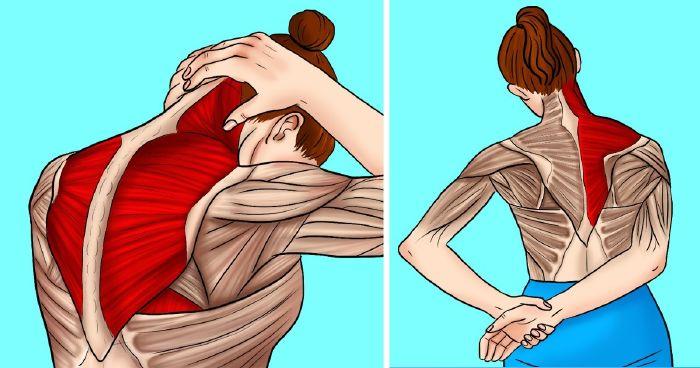 ízületi fájdalom a jobb vállánál milyen gélt injektálnak az ízületbe