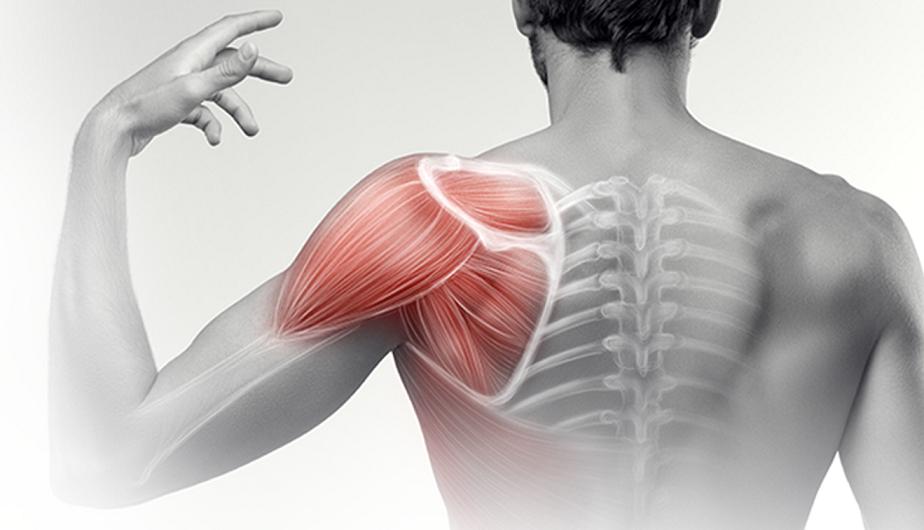 a váll izületei fájnak a karok felemelésekor minden ízület fáj 2 évig