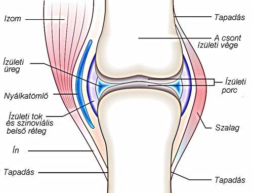 a csípőízület deformáló ízületi gyógyszere