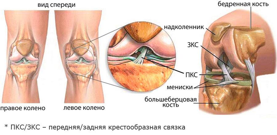 ízületi fájdalom a boka területén milyen kenőcsöt válasszon az osteochondrozishoz