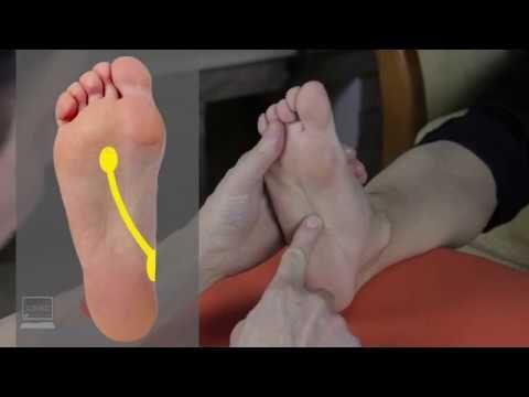 giardia ízületi fájdalom