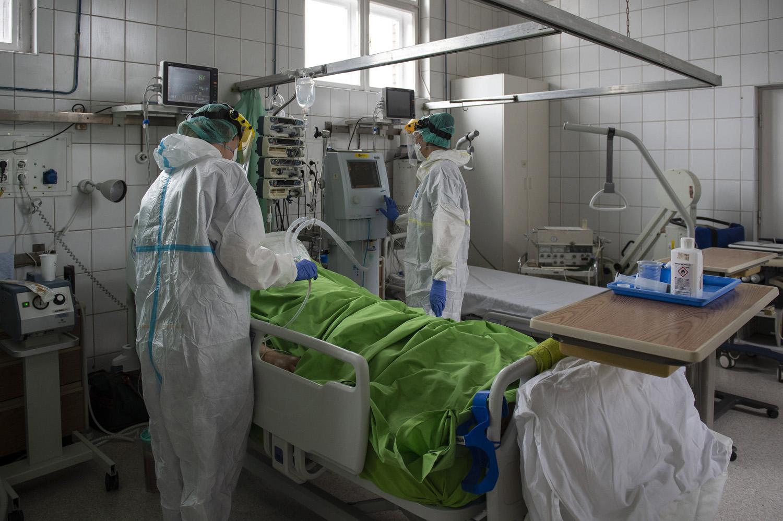 arthrosis kórház