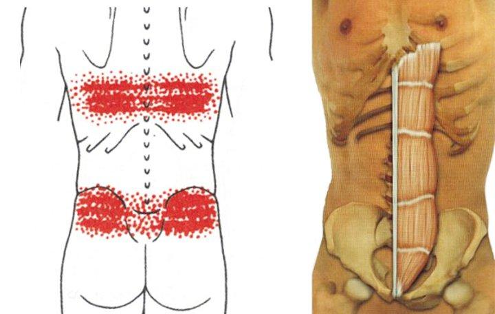 éles fájdalom, amikor feláll a csípőízületben zselatin és ízületi fájdalmak