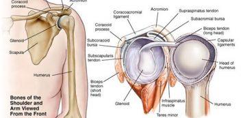 fájdalom és gyengeség a lábak ízületeiben fájó és pattanó ízületek az ujjakon
