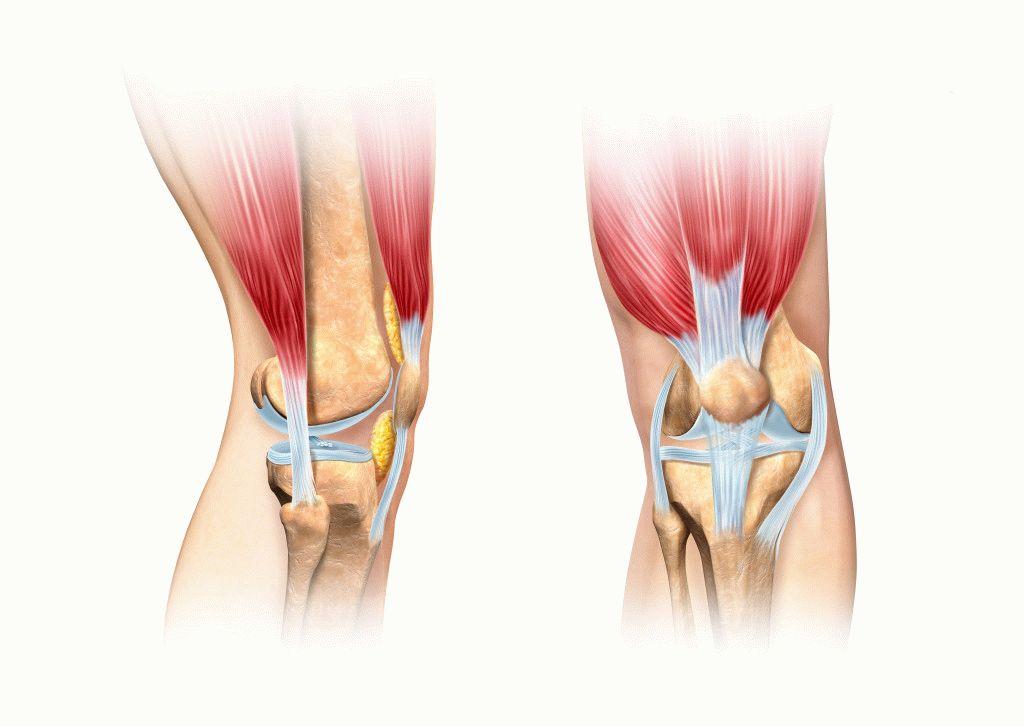 térdgyulladás és kezelése a lábak és a karok ízületei