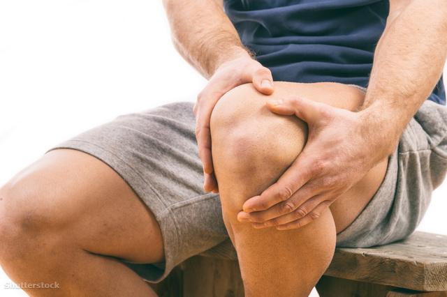fájdalom ízületek ízületek térdízületek és betegségeik