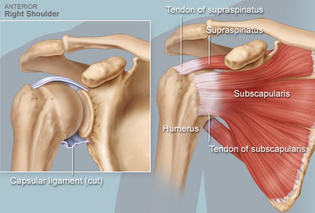 nagyon vállízület fáj lehetséges térdízületet szárnyalni artrózissal