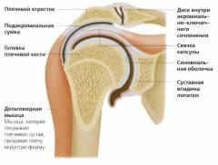 gyógynövények a boka ízületének artrózisához fájdalmak a metacarpophalangealis ízületekben
