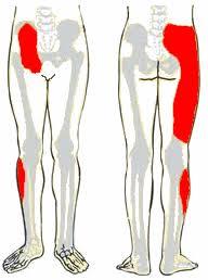 lábfájdalom ízületek